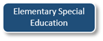 Elementary Special Education