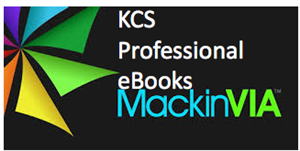 MackinVIA Professional Ebook Button