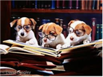 Reading puppies