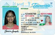 Driver Permit Forms
