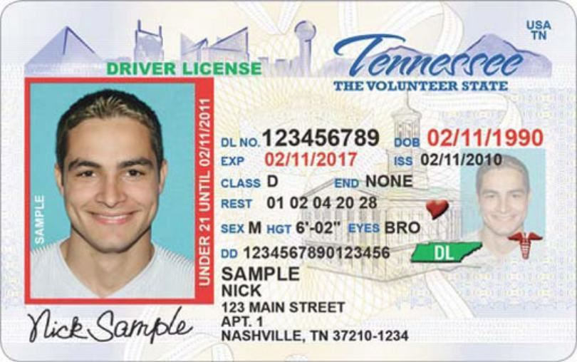 Driver's Permit Information