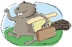 Business Beaver